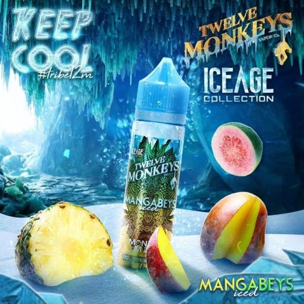IceAge Mangabeys Iced Liquid von 12Monkeys ♥ Shortfill ✔ Mango, Ananas, Guave, Frische ✔ Schneller Versand ✔