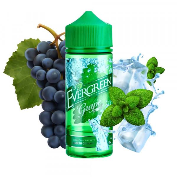 Evergreen Grape Mint