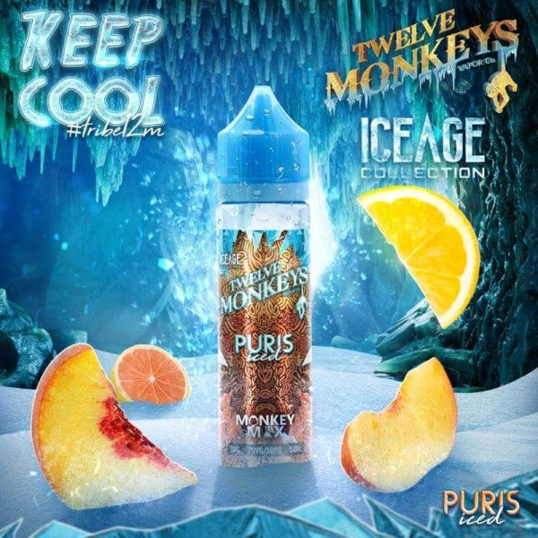 IceAge Puris Iced Liquid von 12Monkeys ♥ Shortfill ✔ Zitrusfrüchte, Pfirsich, Frische ✔ Schneller Versand ✔